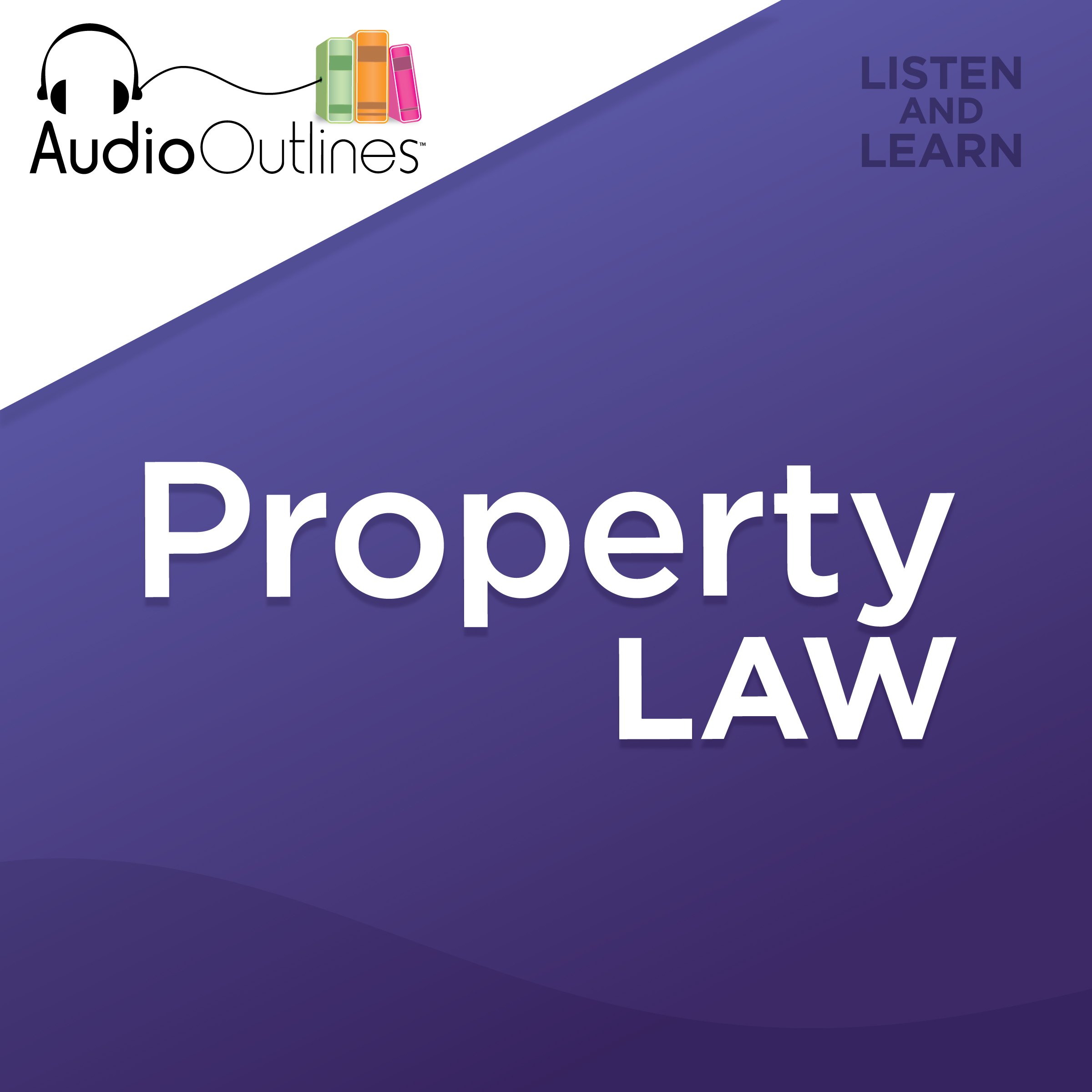 Law School Supplements Property